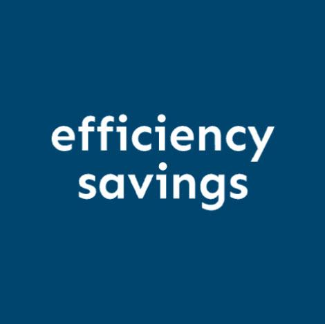 Efficiency Savings